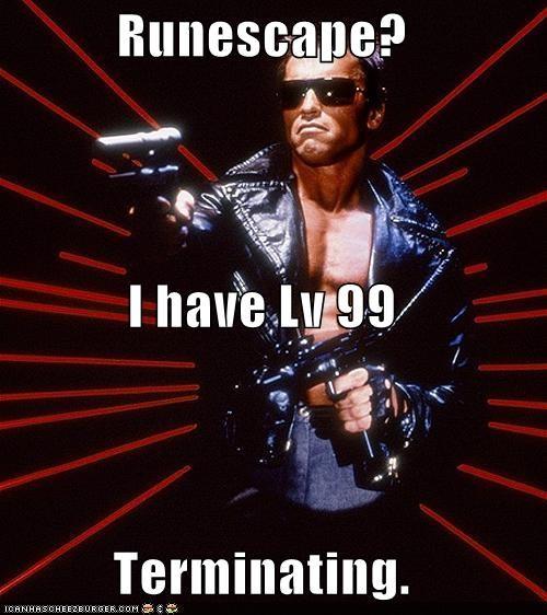 Runescape? I have Lv 99 Terminating.