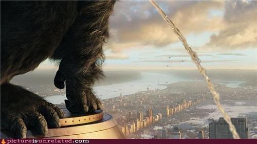 Dammit Kong!