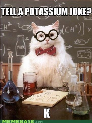 chemistry cat,elements,k,potassium,science