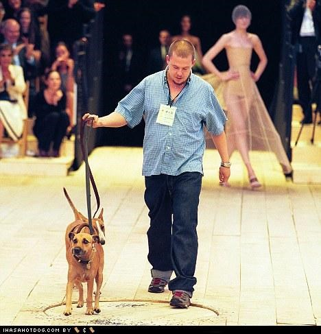 Fashion Designer Alexander McQueen Leaves $50,000 to Dogs, Thousands More to Animal Charities