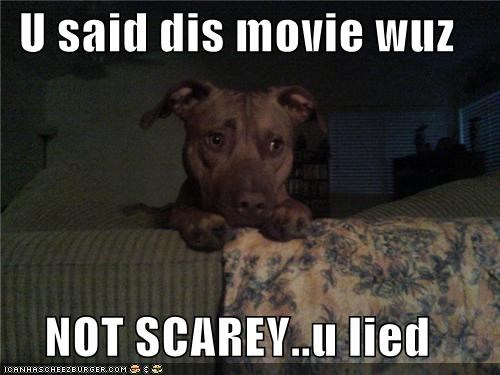 U said dis movie wuz  NOT SCAREY..u lied