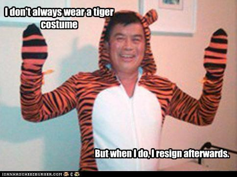 I don't always wear a tiger costume