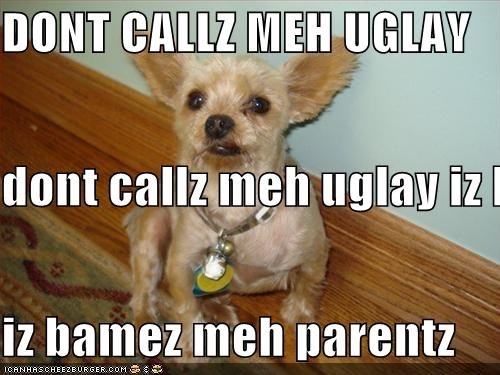 DONT CALLZ MEH UGLAY dont callz meh uglay iz born thiz wayz iz bamez meh parentz