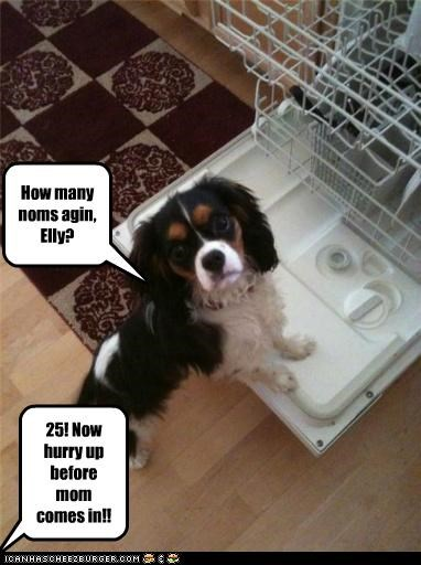 Dishwasher 4 noms