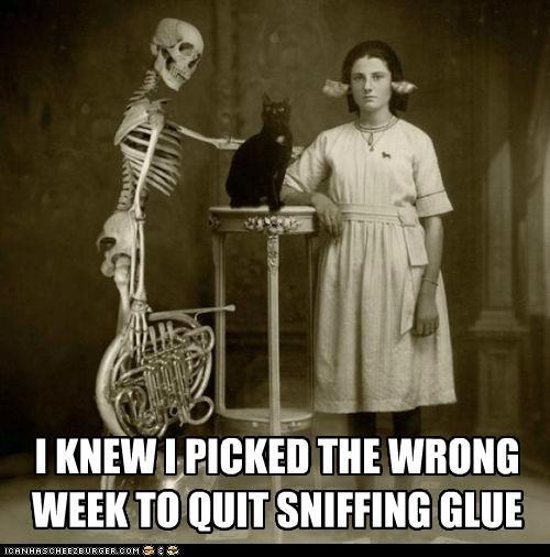 funny,Photo,skeleton,wtf
