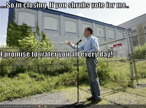....So in closing, If you shrubs vote for me.. I promise to water you all every day!