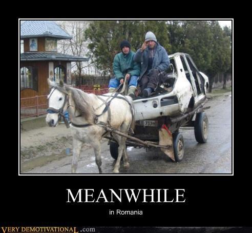 car,hilarious,horse,Meanwhile,romaina