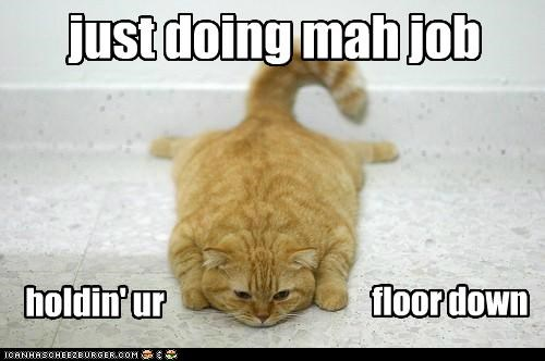caption,captioned,cat,doing,down,floor,Hall of Fame,holding,job,tabby