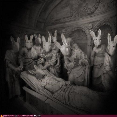 Bunny Funerals Are Weird