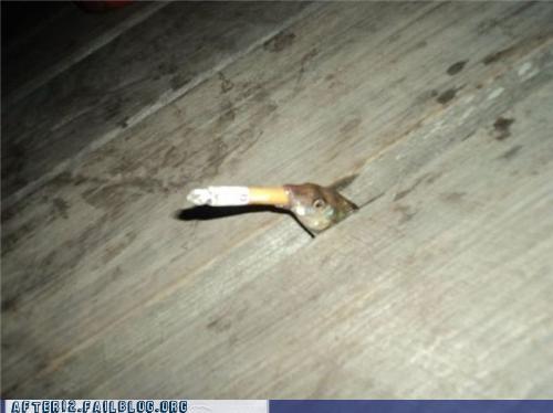 cigarette,crunk critters,fish,smoking