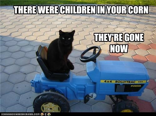 basement cat,best of the week,caption,captioned,cat,children,children of the corn,corn,gone,Hall of Fame,now,pun,tractor