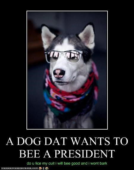 A DOG DAT WANTS TO BEE A PRESIDENT