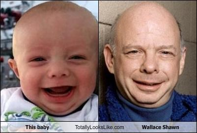 TLL Classics: This Baby Totally Looks Like Wallace Shawn