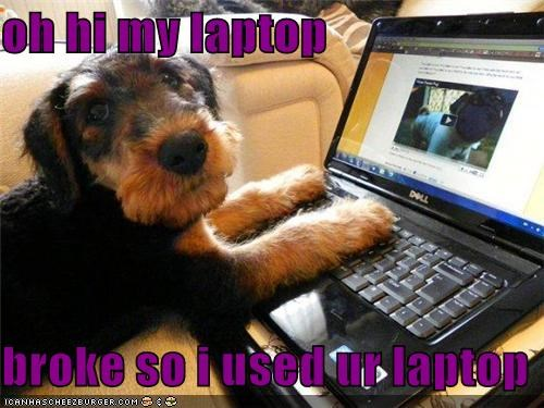 oh hi my laptop  broke so i used ur laptop