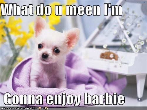 What do u meen I'm    Gonna enjoy barbie