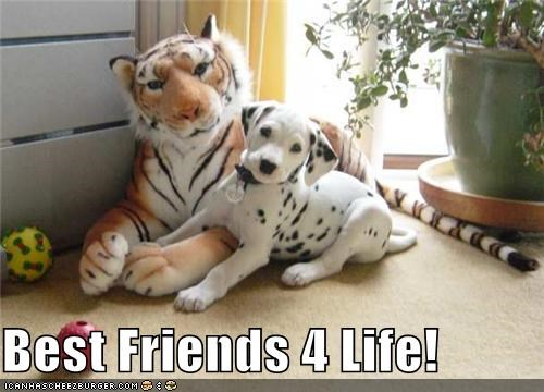 Best Friends 4 Life!