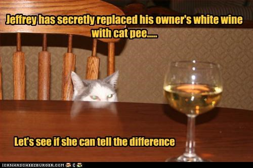 Jeffrey has secretly replaced his owner's white wine with cat pee.....
