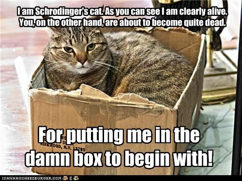 I am Schrodinger's cat. As you can see I am clearly alive. You, on the other hand, are about to become quite dead.