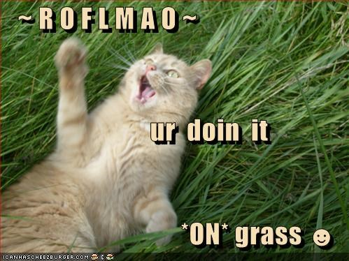 ~ R O F L M A O ~                ur  doin  it *ON* grass ☻