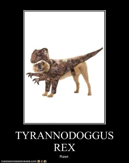 best of the week,brussels griffon,costume,dinosaur,fearsome,rawr,tyrannodoggus rex