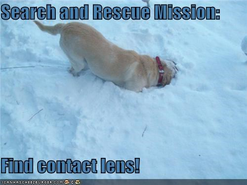 Search and Rescue Mission:  Find contact lens!