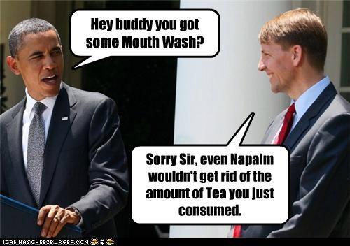 barack obama,political pictures,tea party