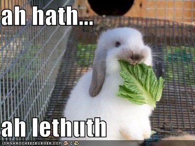 bunnies,cages,lettuce,rabbits,vegetables