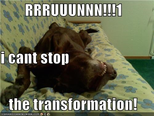 changing,couch,mixed breed,monster,run,transformation,whatbreed