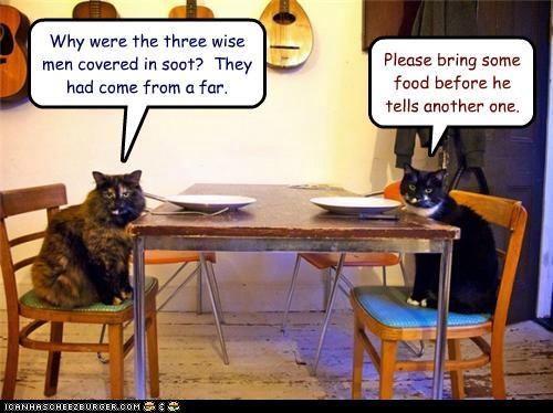 bad,begging,caption,captioned,cat,Cats,do not want,food,horrible,joke,non sequitur,punchline,request