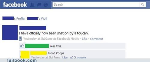 toucan,froot loops,froot poops,fruit