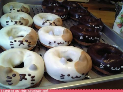 Cats,chocolate,donuts,ears,epicute,faces,icing,kitties
