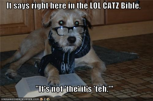 """It says right here in the LOL CATZ Bible,  """"It's not 'the' it's 'teh.'"""""""