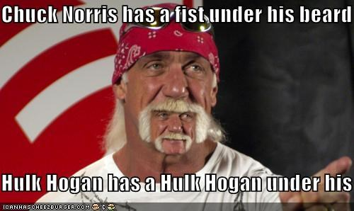 Chuck Norris has a fist under his beard  Hulk Hogan has a Hulk Hogan under his