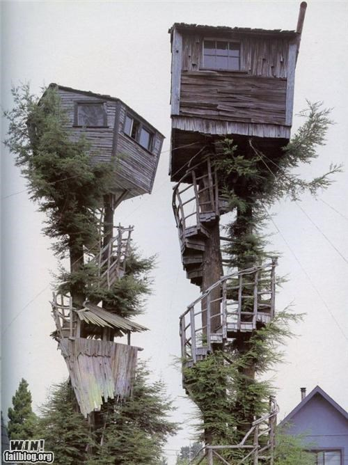architecture,home,play time,tree house,woods