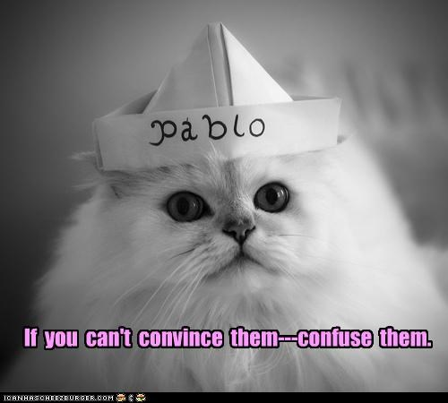 cant,caption,captioned,cat,confuse,convince,hat,if,lolwut,options,solution