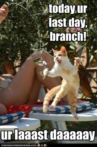 keel all ze branch