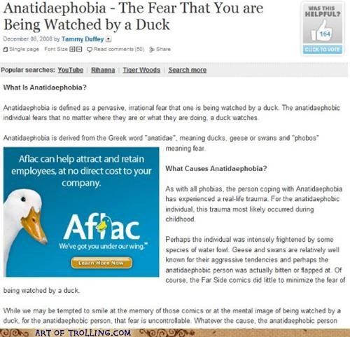 Ad,best of week,duck,phobia