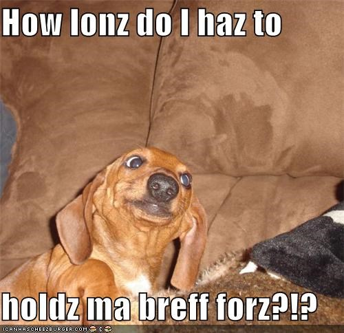 How lonz do I haz to   holdz ma breff forz?!?