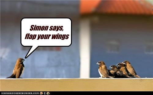 Simon says, flap your wings