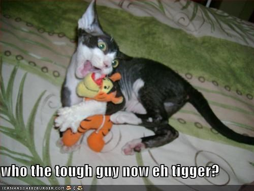 who the tough guy now eh tigger?