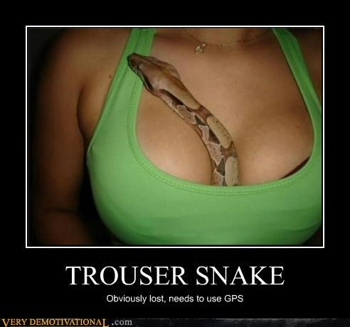 Trouser Snakes http://memebase.cheezburger.com/verydemotivational/tag/trouser-snake