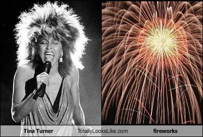 Tina Turner Totally Looks Like Fireworks