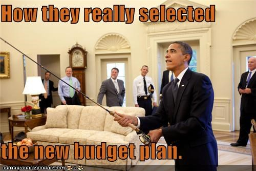 How they really selected  the new budget plan.