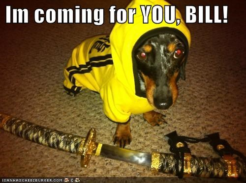 beatrix kiddo,clothing,dachshund,Kill Bill,martial arts,ninja,sword,track jacket,yellow,yellow jacked