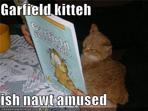 Garfield kitteh  ish nawt amused
