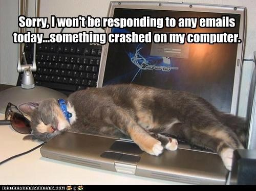 be,caption,captioned,cat,computer,crashed,double meaning,e-mails,laptop,pun,responding,sleeping,something,sorry,today,wont