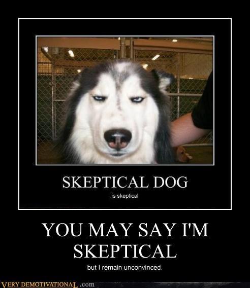 YOU MAY SAY I'M SKEPTICAL