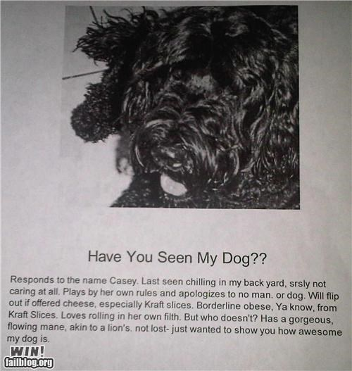 bragging,cool dog,dogs,lost,missing,pets,sign