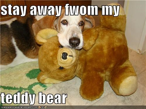 stay away fwom my  teddy bear