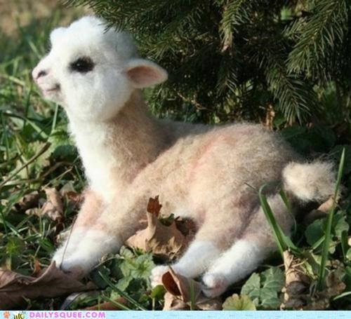 fake,Hall of Fame,llama,oh my squee,probably fake,thing,unbearably squee,wat